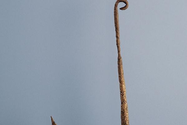 Anzuelo de bronce